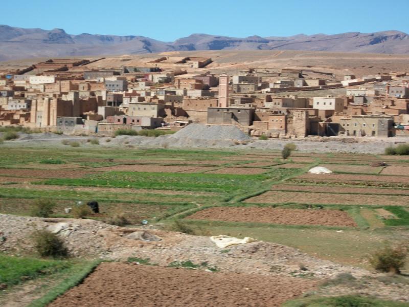 retour maroc oct - nov 2010 - Page 4 12910