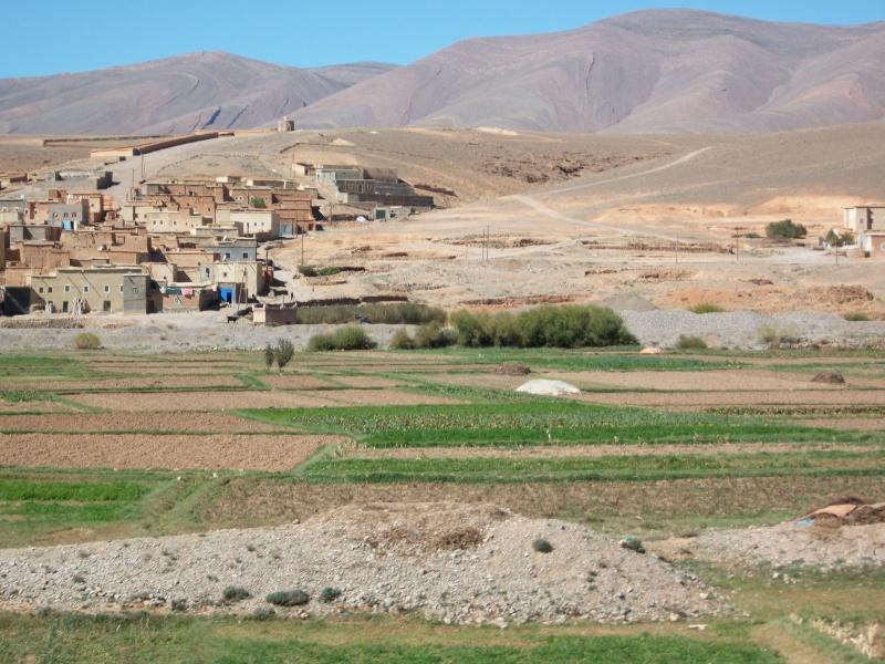 retour maroc oct - nov 2010 - Page 4 13010