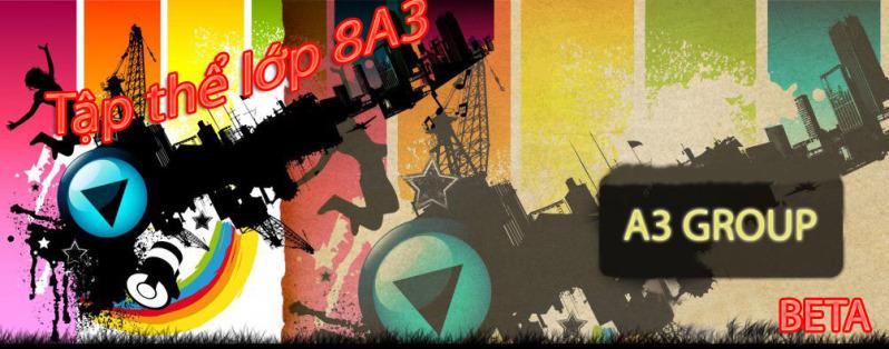Lớp 8A3 ( 2010-2011)