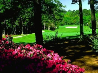 GOLF FORUM - HOW TO POST REPLY/TOPIC Golf_b10
