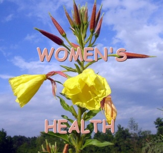 WOMEN'S HEALTH - HOW TO POST A REPLY/TOPIC Womens10