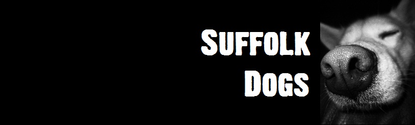Suffolk Dog Forum