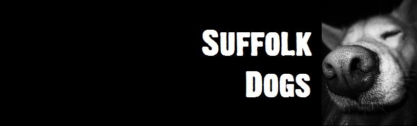Suffolk Dog Forum