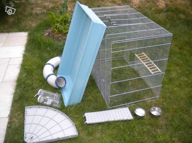 Vend cage Jenny KD  (91, rp) Cage10