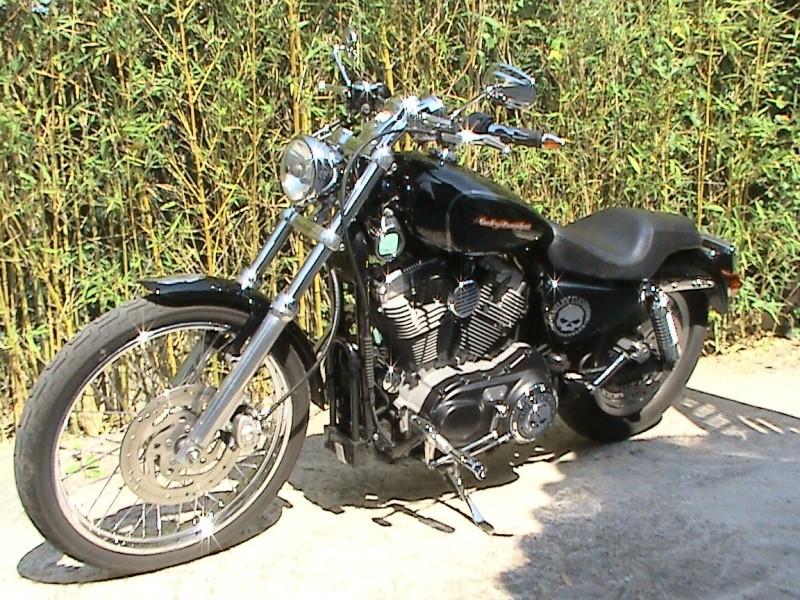 En 883... combien sommes nous sur le Forum Passion-Harley - Page 6 Dsc01010