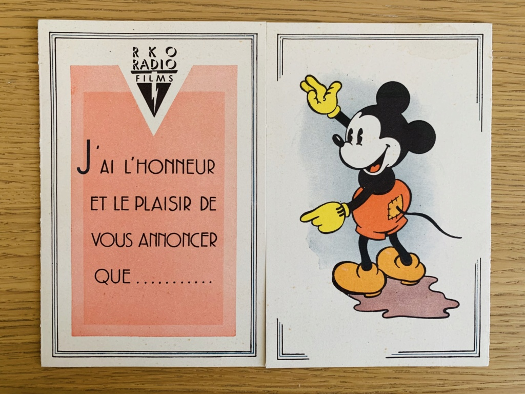 Comment Walt Disney organise la distribution de ces films en France - Page 2 Img_0312