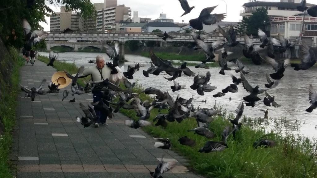 LE JAPON ! un jour j'irai !!! 20190710