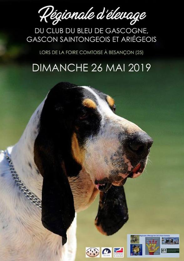Régionale d'élevage Besançon (25) Captur21