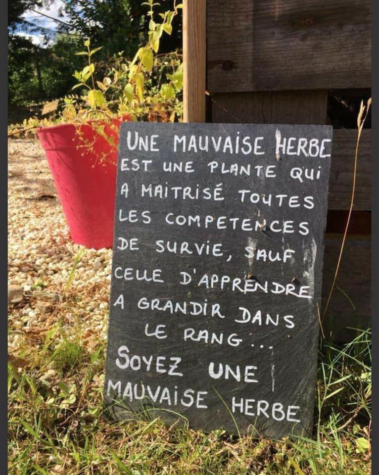 Humour en images - Page 6 _xa1t610