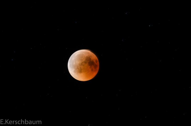 Der Mond - Seite 2 Dsc_0220