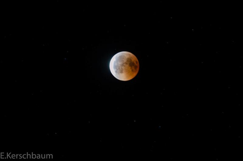Der Mond - Seite 2 Dsc_0221