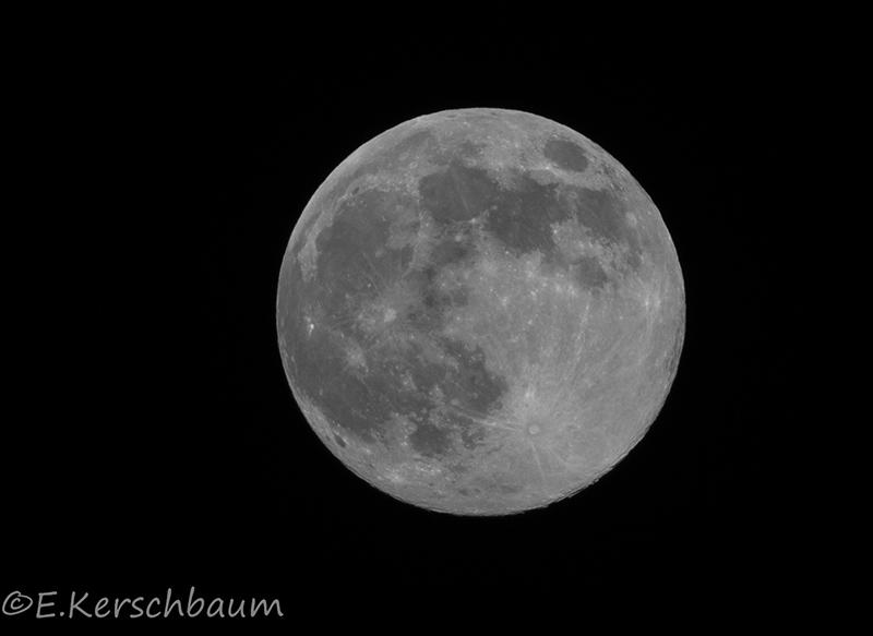 Der Mond - Seite 4 Dsc_2819