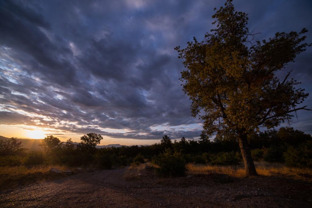 Le soleil se léve sur la provence  4m6a7111