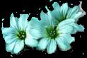 Bannières neutres 460x60 px et logos 88x31 px Fleurs10