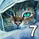 Concours du mois de septembre 2021 -  La course au chiffre 10 - Page 2 Im710
