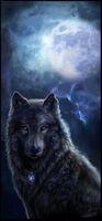 Liste d'avatars Loup-210