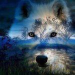 Liste d'avatars Loup-b11