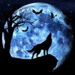 Liste d'avatars Loup-o10