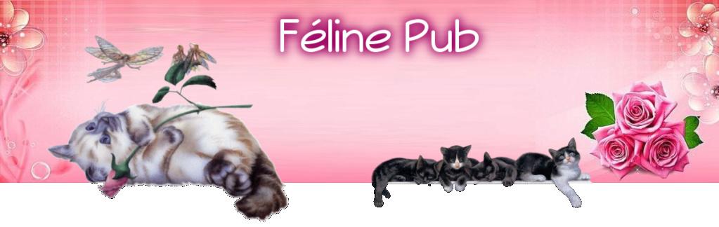 ©Féline Pub | Forum de pub, codage, graphisme, annuaire web