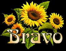 Résultats Concours mai 2021 Bravo_24