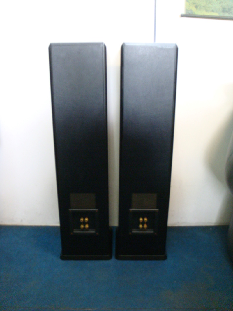 Mission 752 floor stand speaker(sold) Dsc06820