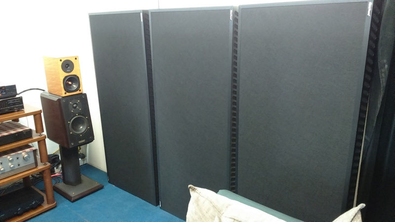 """Realtraps acoustics Mondo traps(2'x4'9"""") Dsc_0119"""