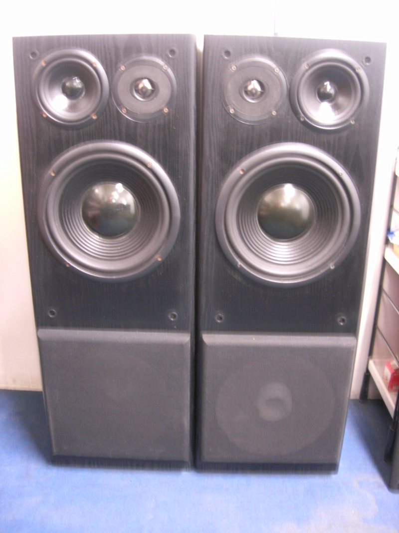 Robertson audio s-25 speaker(closed) Dscn3211