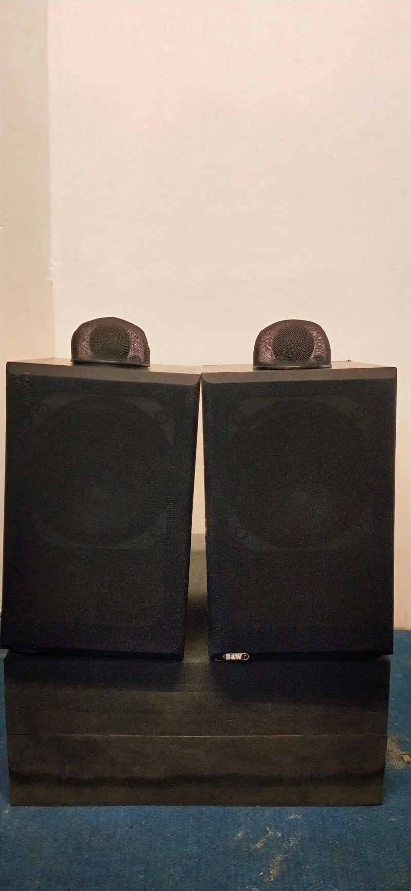 B&W DM-17 speaker  Img20234
