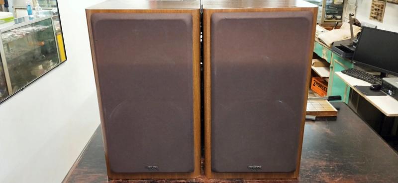 Diatone DS-77Z speaker Img20238