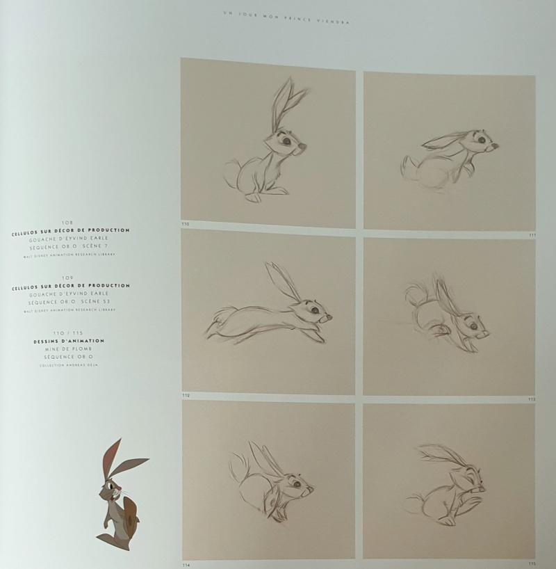 La Belle au Bois Dormant - Page 11 20200319