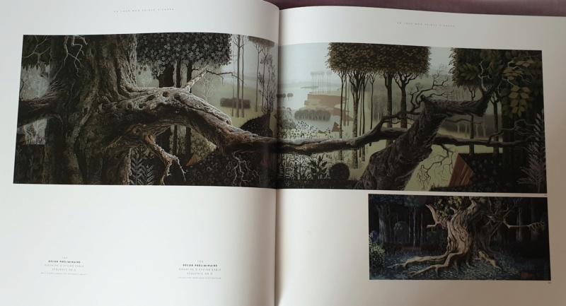 La Belle au Bois Dormant - Page 11 20200321