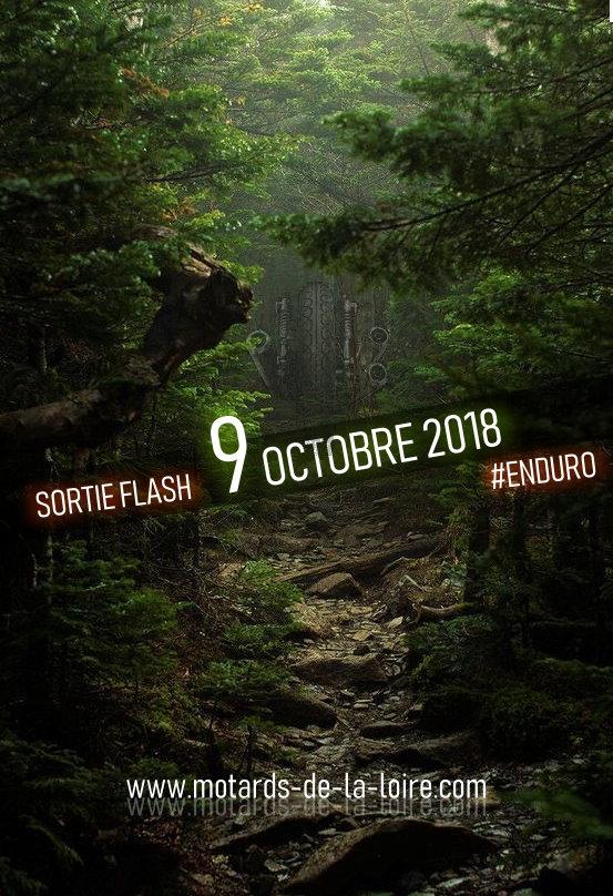 [***FIN***] MARDI 9 OCTOBRE 2018 Foret10