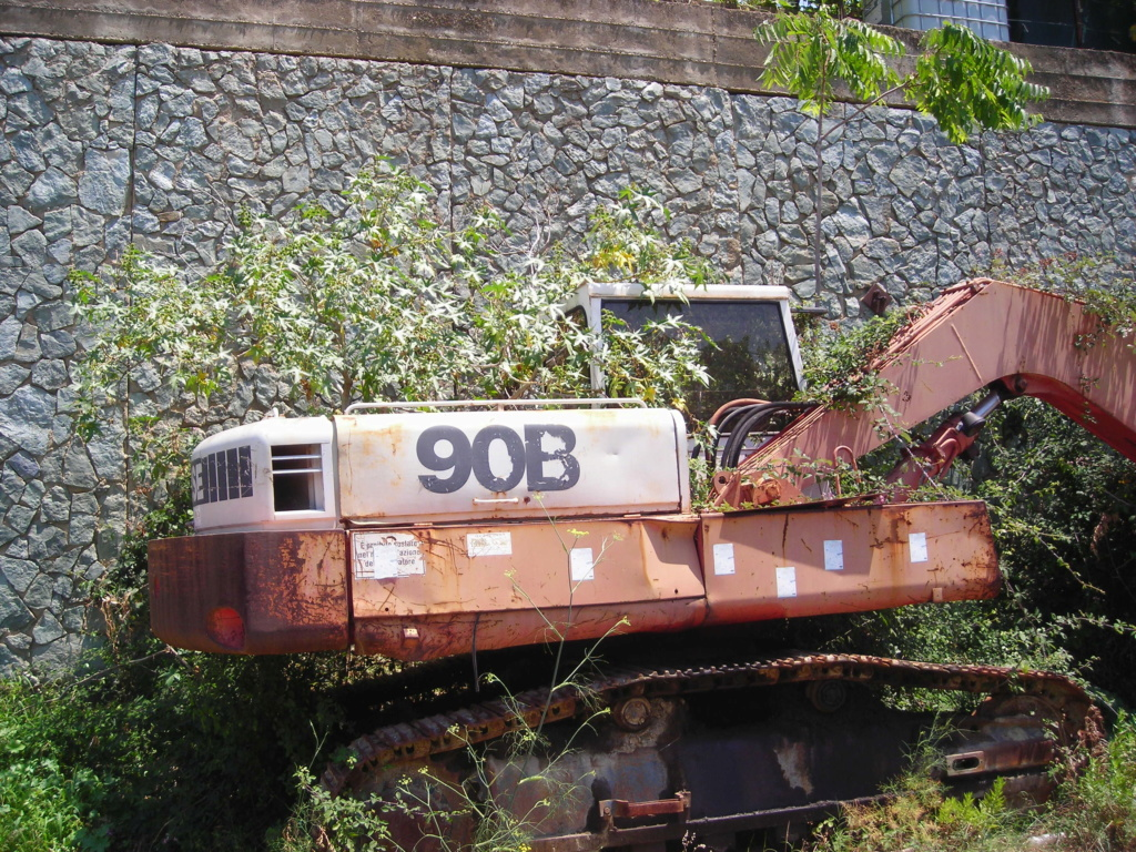 escavatori Dscn4339