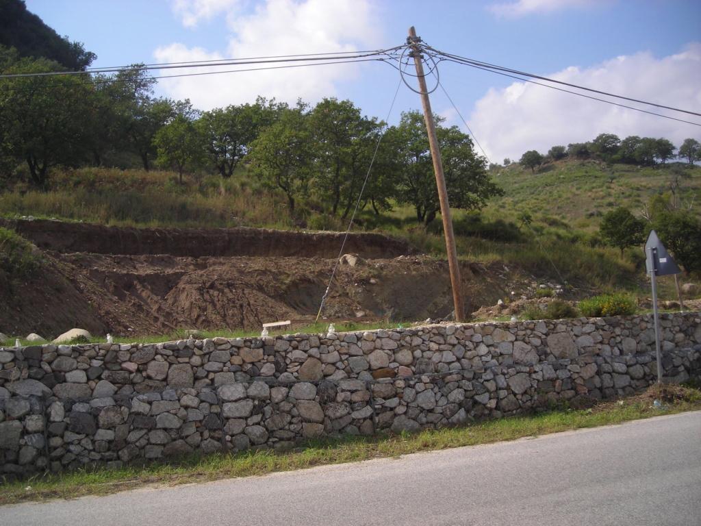 escavatori - Pagina 3 Dscn4772