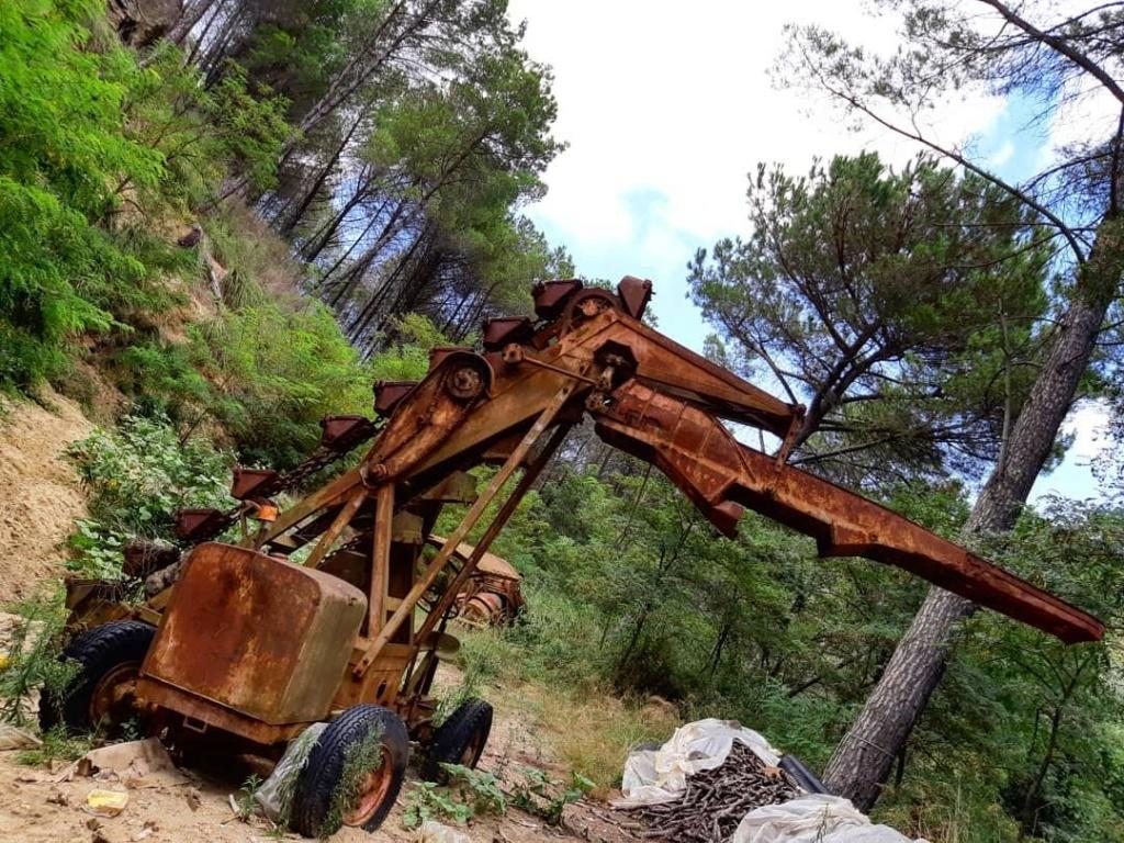 grigliatrici draghe escavatrici a noria  Escava39