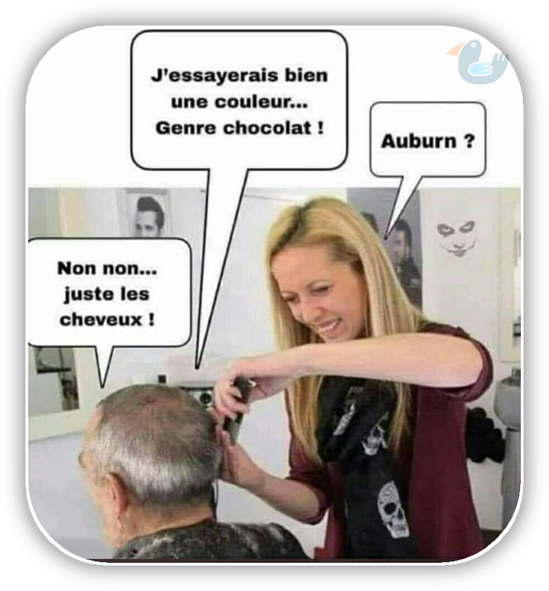 Pour en rire aussi !  - Page 7 Auburn10