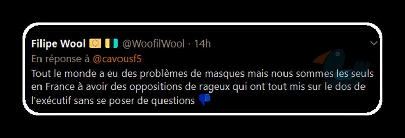 Le gouvernement français a-t-il menti sur le port du masque ? Filipe10