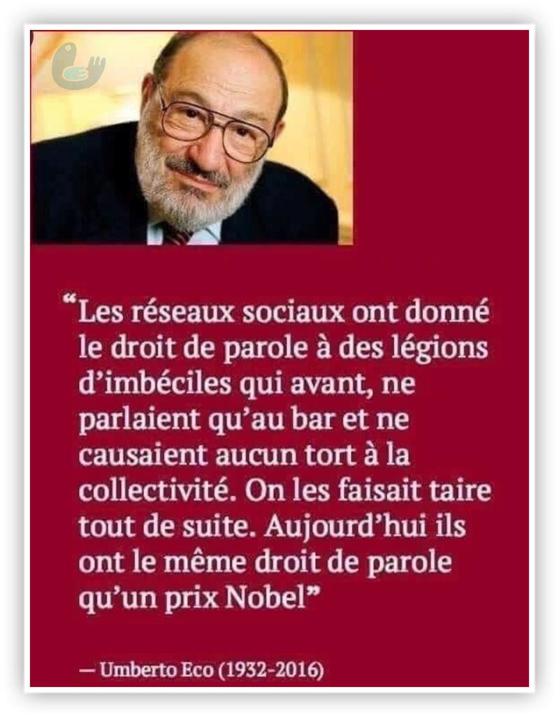 La France Bas de plafond - Page 2 Umbert10