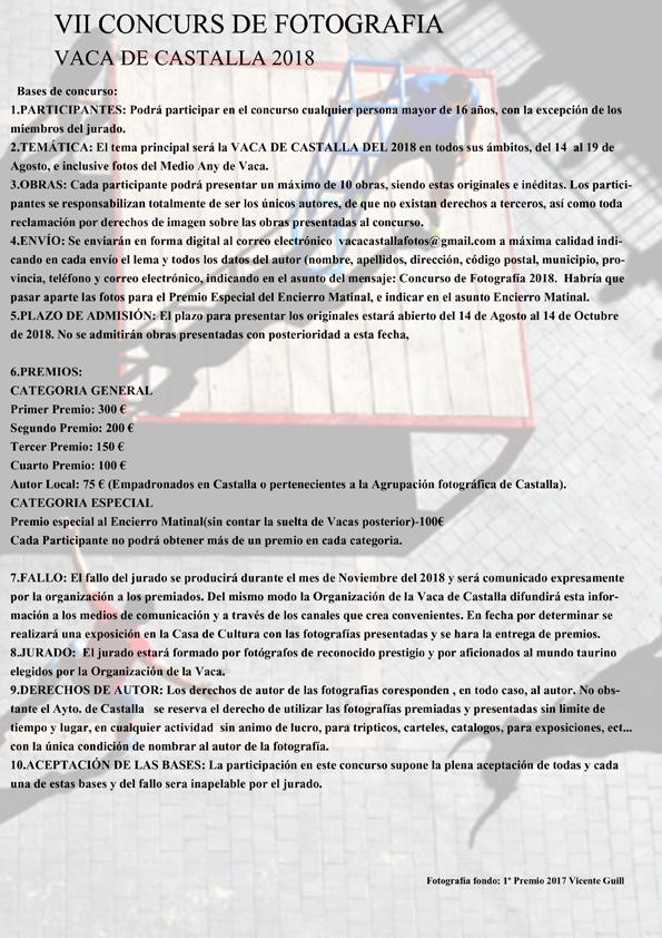 Concursos de Fotografía Octubre 2018 - Página 6 Castal10
