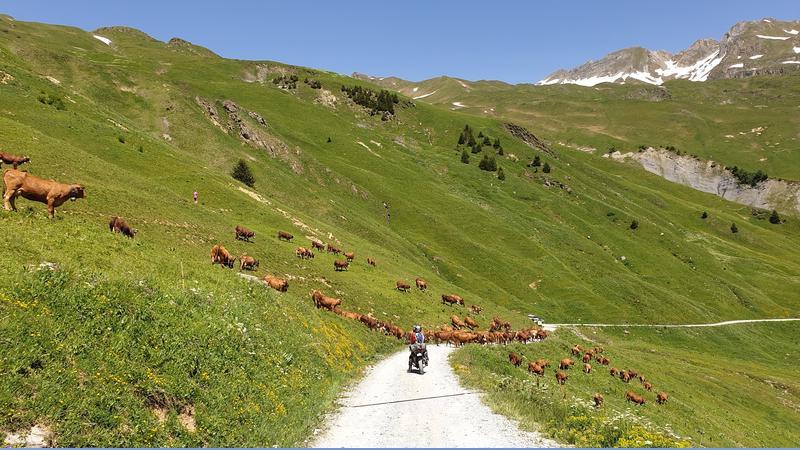 Vérification inscription  TT et route dans les Alpes fin juin 2019  T-shirt - Page 15 20190622
