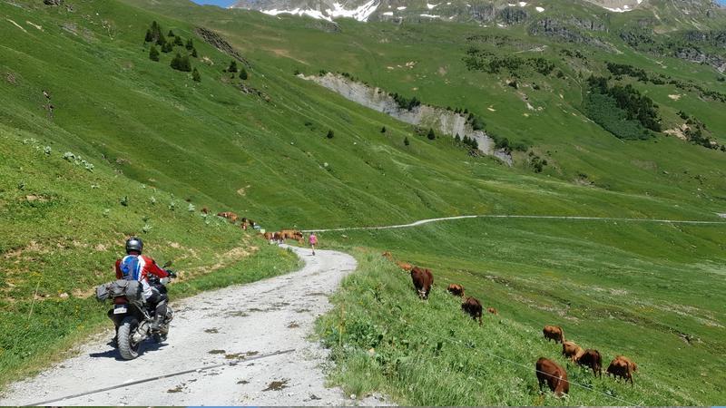 Vérification inscription  TT et route dans les Alpes fin juin 2019  T-shirt - Page 15 20190623