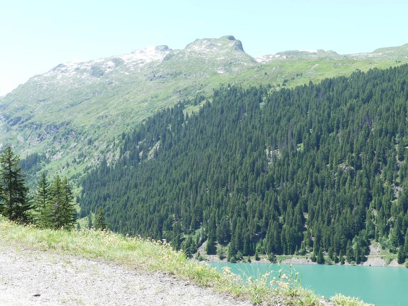Vérification inscription  TT et route dans les Alpes fin juin 2019  T-shirt - Page 15 P1060111