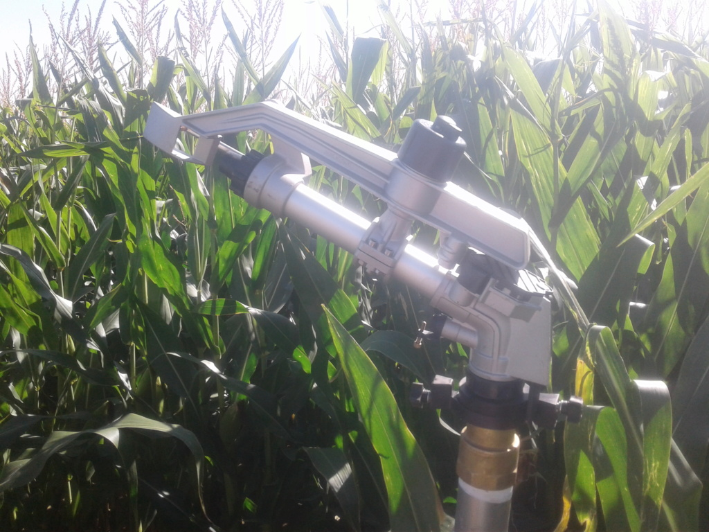Irrigation 2018 - Page 4 20180810