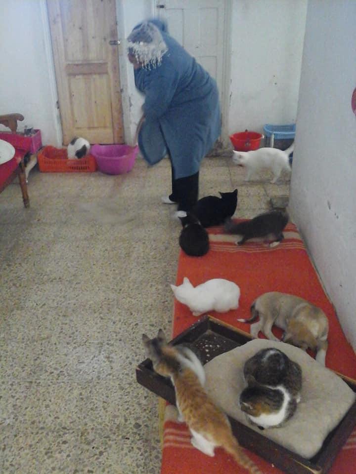 Aide CCTNA pour les animaux de HOUDA 35644310