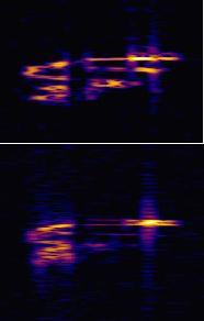 Echos radio des météores - nouveau groupe Facebook Rundll10
