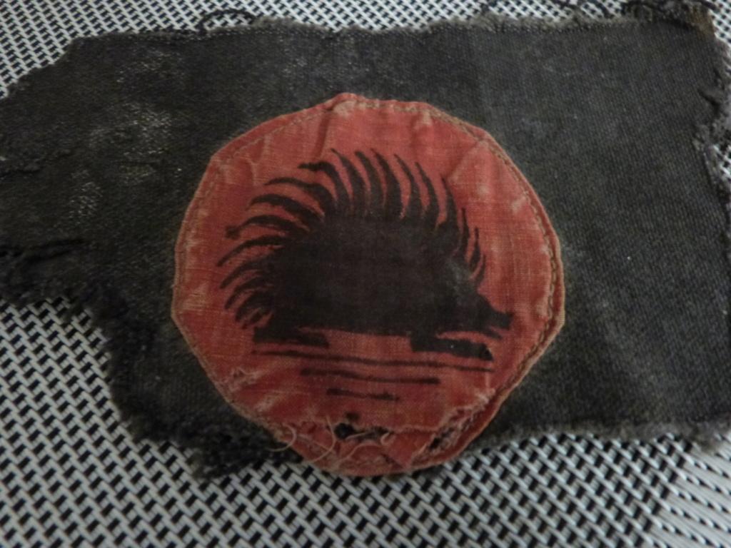 insignes tissus a identifier P1170517