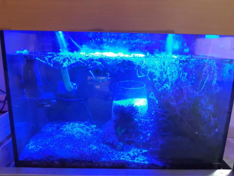 Nouveau projet 450 litres avec refuge 120 litres 20180912