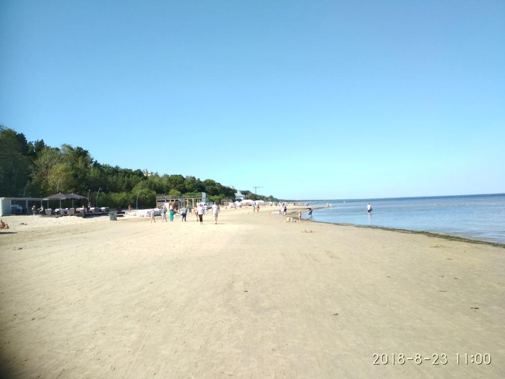 Снова с моря дунуло в середине дня...))) ( Юрмала) - Страница 3 Img_2191
