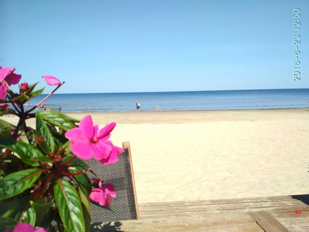 Снова с моря дунуло в середине дня...))) ( Юрмала) - Страница 3 Img_2216