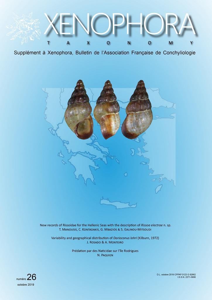 Xenophora N° 168 / Taxonomy N° 26 Xenota11